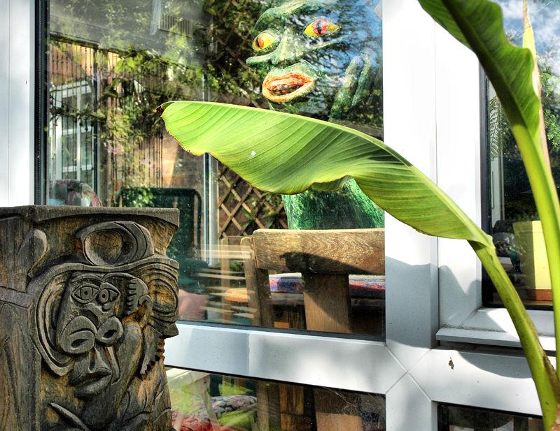 Devil Artist Conservatory Banana Ludlow UK