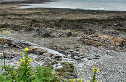 Mumbles Lighthouse Gower Wales UK
