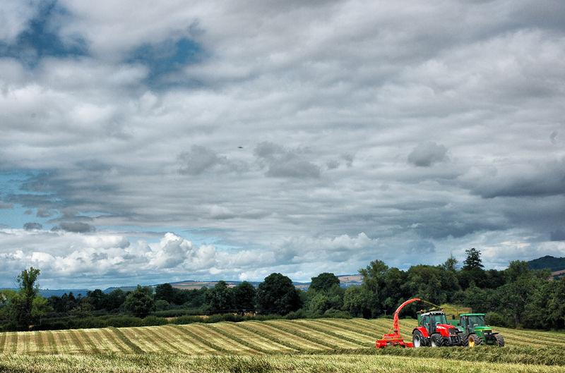 Harvest Silage Priors Halton Shropshire UK