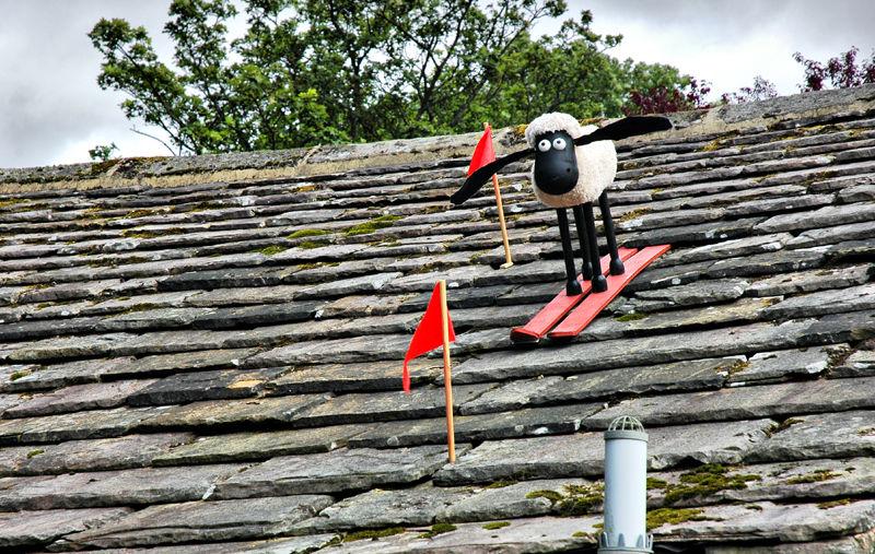 Shaun Sheep Kettlewell Yorkshire UK
