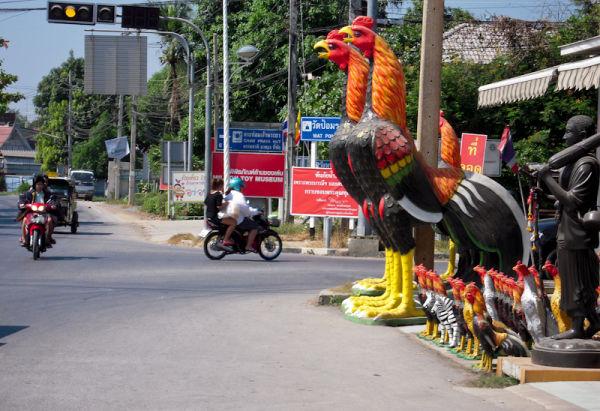 Big Chickens Ayuthaya Thailand