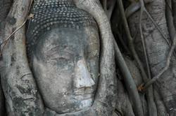 Buddha Mahathat Ayuthaya Thailand