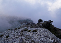 Maroma Axarquia Andalusia Spain