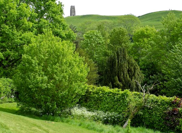 Glastonbury Tor Chalice gardens Somerset UK