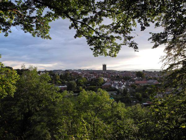 Foliage Whitcliff Ludlow Shropshire UK