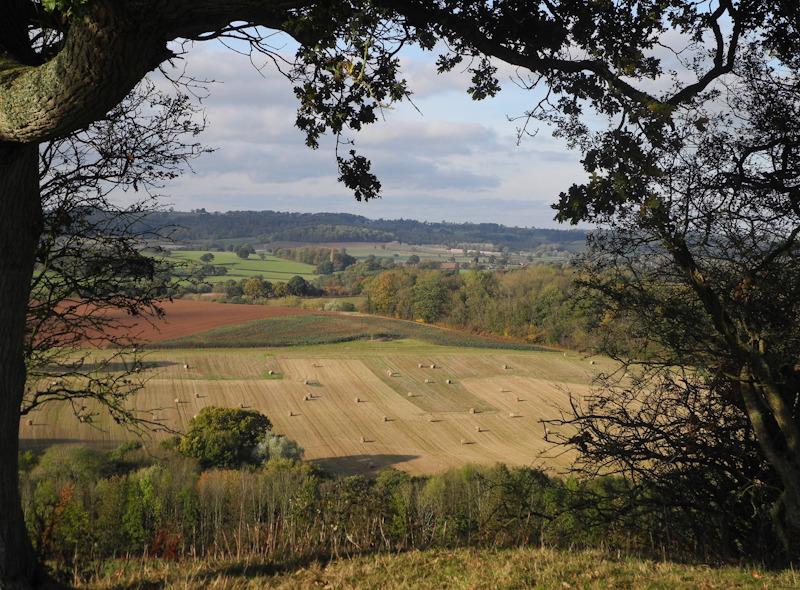 Autumn Caynham Ludlow Shropshire UK