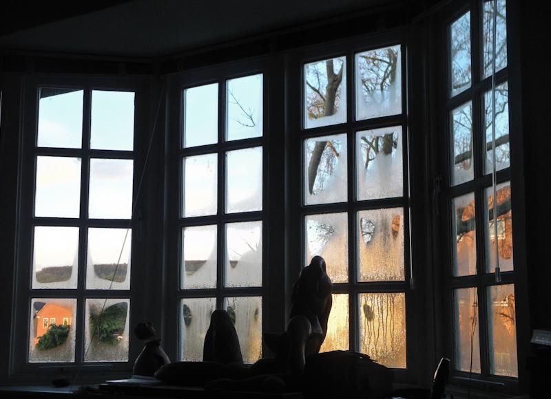 Morning Ludlow Shropshire UK