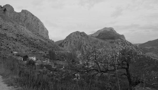 Zaffaraya Pass Axarquia Andalusia Spain