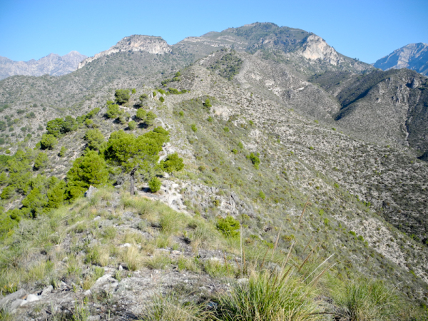 Cuesta Frigiliana Axarquia Andalusia Spain