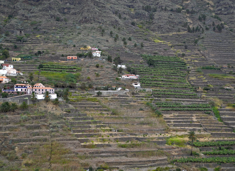 Hermigua La Gomera Canary Islands Spain