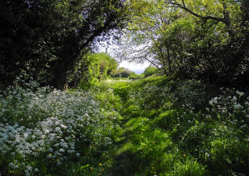 Ludlow  Green Lane Shropshire UK