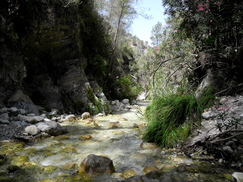 Chillar Axaarquia Andalusia Spain