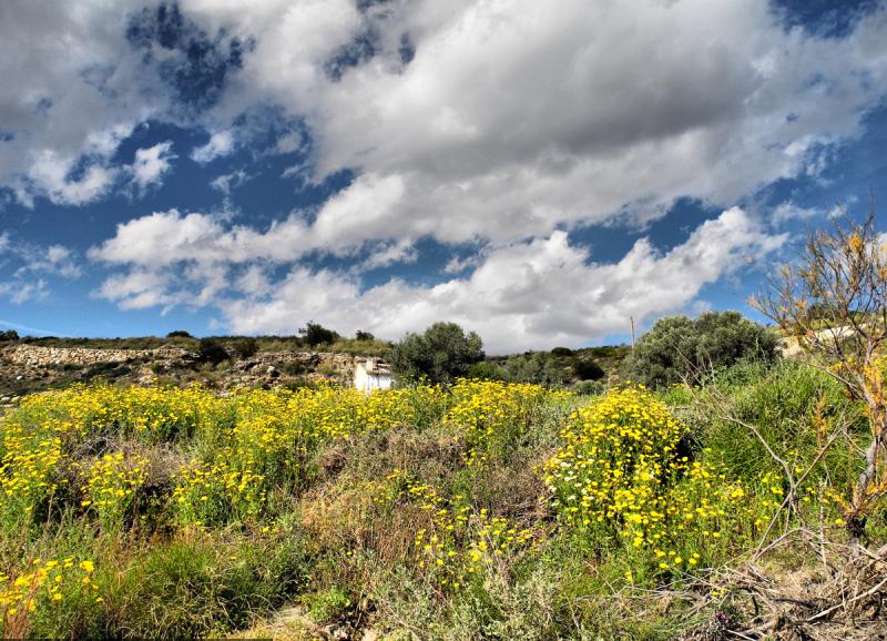 Alfaix Campo Andalusia Spain