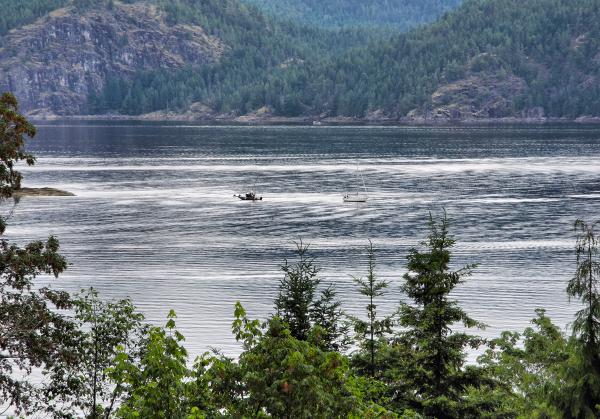 Cortez BC Canada Aground Boat
