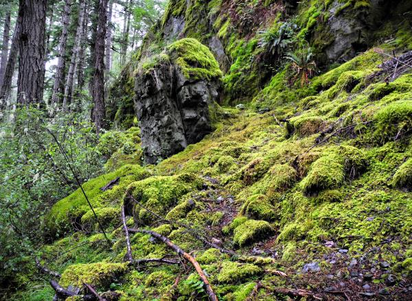 Cortez BC Canada Easter Bluff