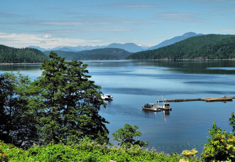 Oyster Bay BC Canada