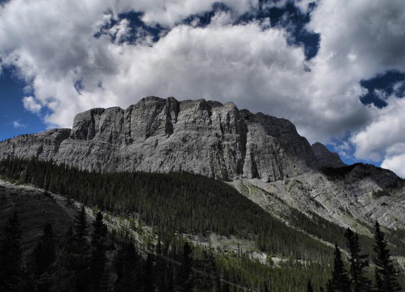 Canmore Alberta Canada Grassi