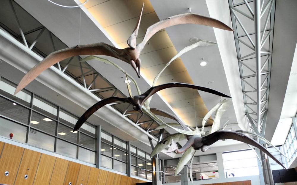 Calgary Airport Alberta Canada