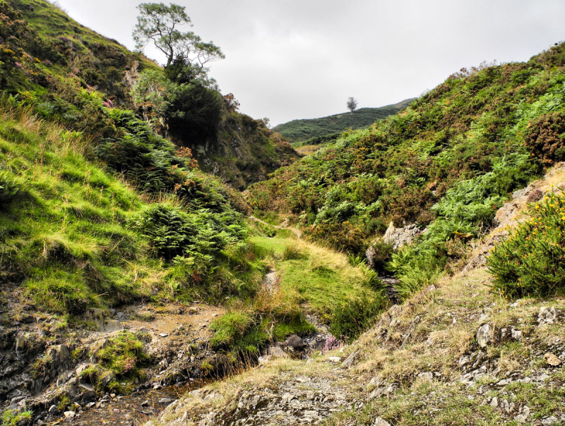 Boiling Well Valley Long Mynd Shropshire