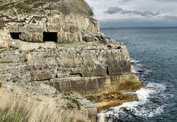 Tilly Whin Durlston Head Dorset UK