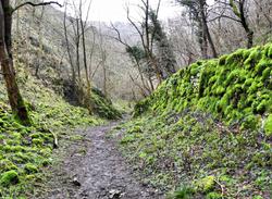Dovedale Peak District UK