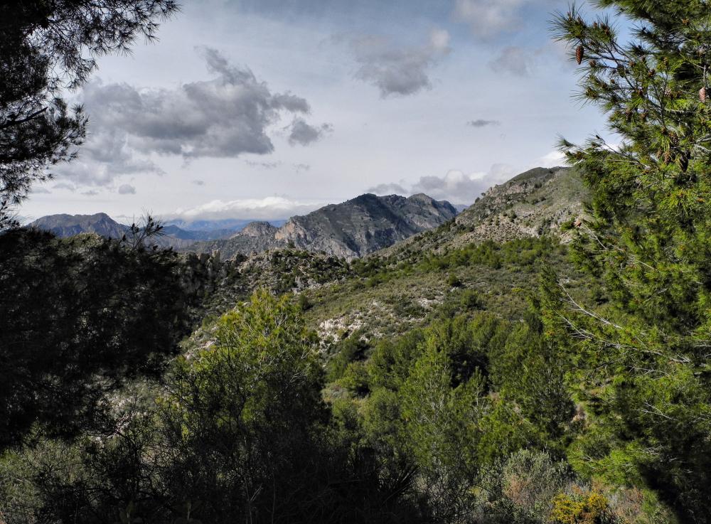 Cortijo Almachar Axarquia Andalusia Spain