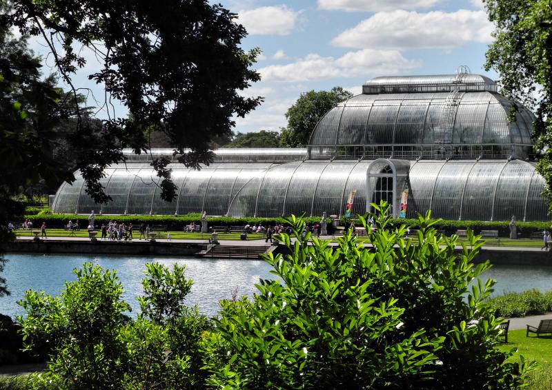 Kew Gardens Palm House UK