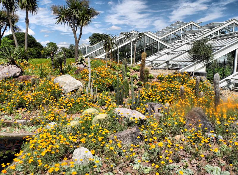 Kew Gardens Hot House UK