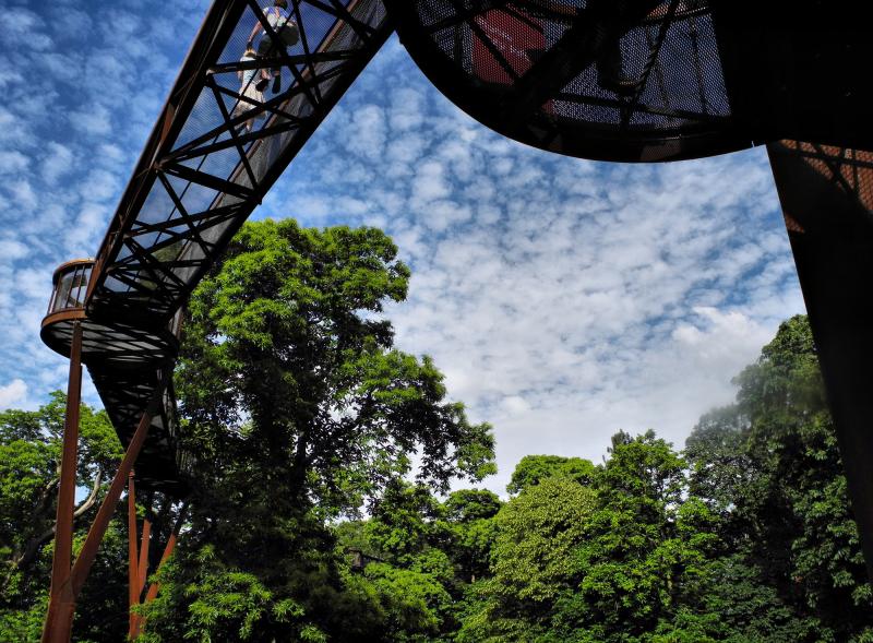 Kew Gardens Canopy Walk UK