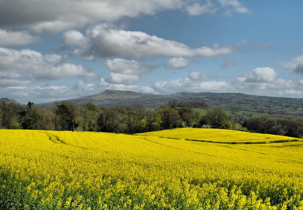 Spring Ludlow Shropshire UK