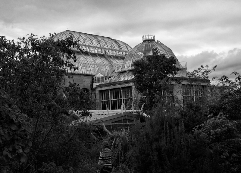 Edinburgh Botanic Gardens PalmHouse Scotland UK