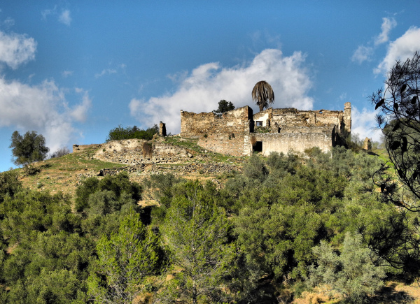 Chinchilla Montes de Malaga Andalusia  Spain