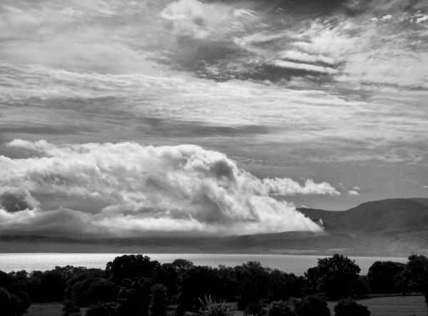 Menai Straits Anglesey Wale