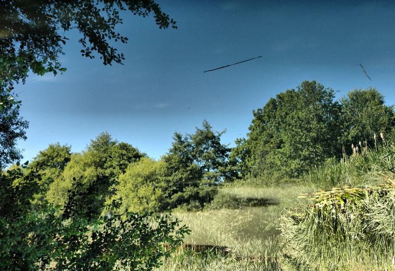 Ludlow Shropshire UK reflection