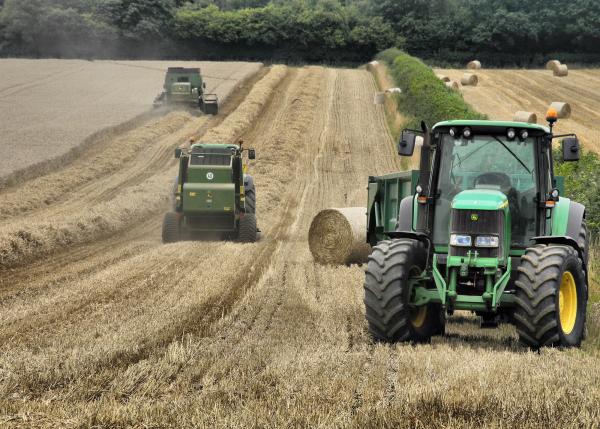 Ludlow Shropshire UK Harvest