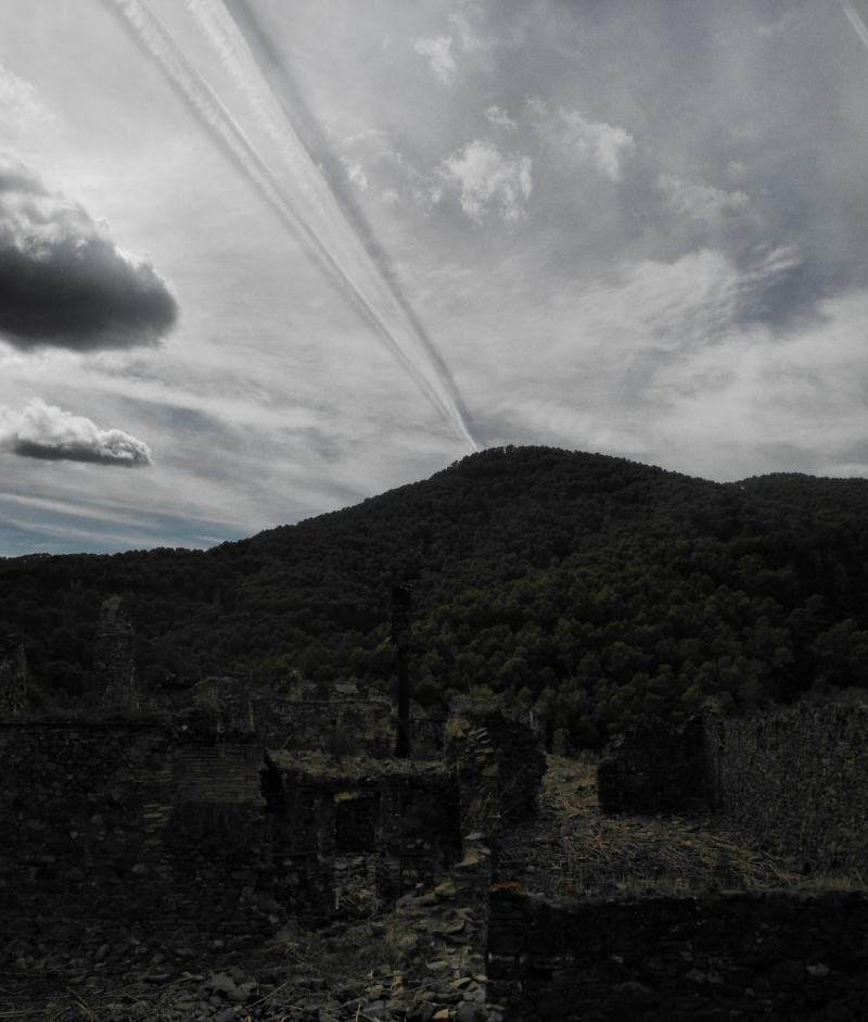 Montes de Malaga Spain Chincilla