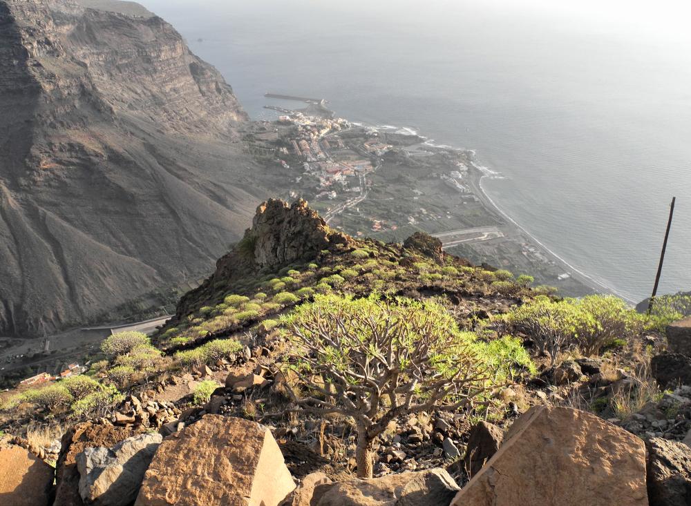 La Gomera Canaries Spain Arure