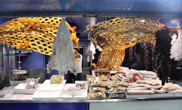 Zaragoza Spain Fish
