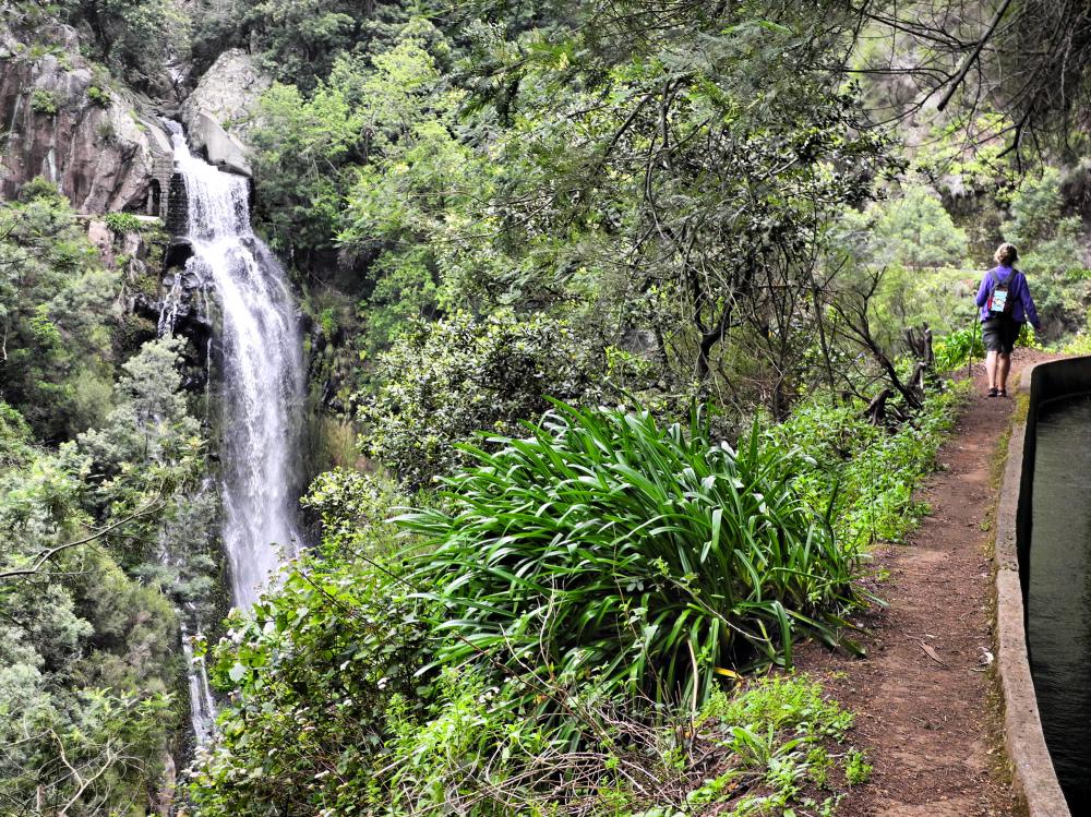 Madeira Funchal Levada