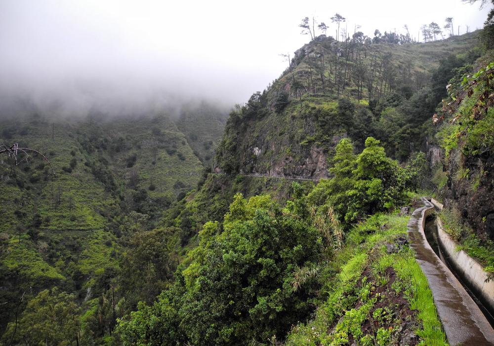 Madeira Levada Nova