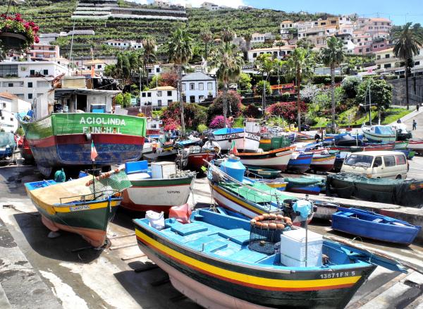 Madeira Camara Harbour
