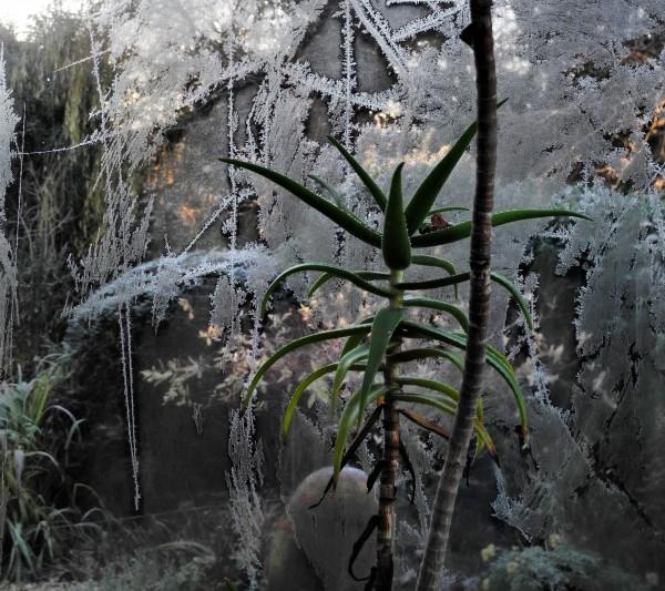 Ludlow Shropshire UK Frost