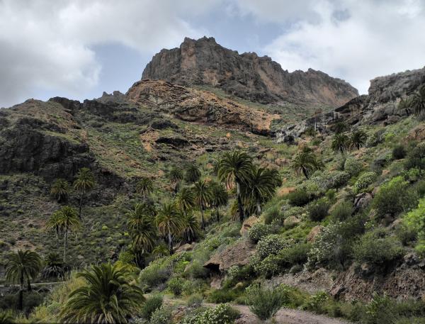 Gran Canaria Spain Soria