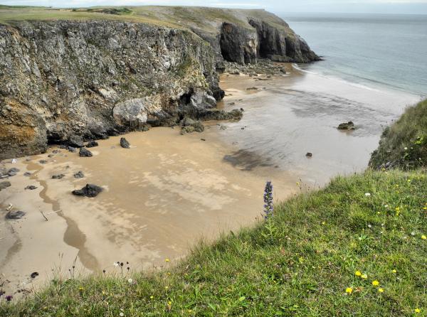 Pembrokeshire Wales UK