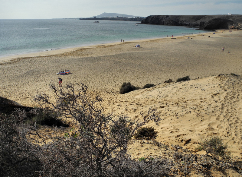 Lanzarote Papagayo Canary Islands