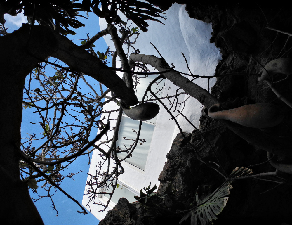 Lanzarote Fundacion Cesar Manrique Canaries