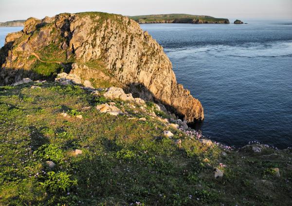 Pembrokeshire Wales UK Giltar