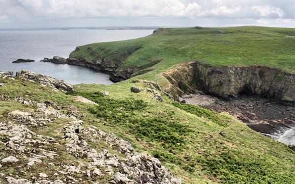 Pembrokeshire Wales UK Skomer