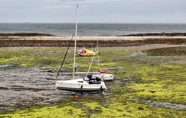 Northumberland UK Seahouses