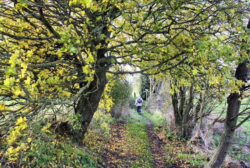 Norfolk Norwich UK